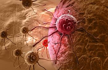 kreftcelleweb507