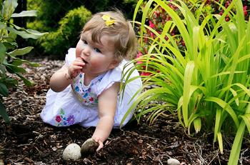 3_tarmflora-baby-507
