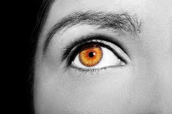 pupillene1